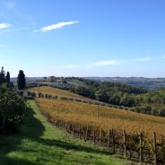 Tuscany. Property in Chiantishire. Ref. F111