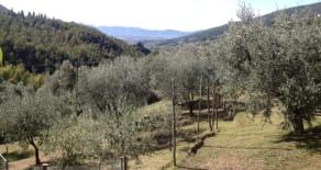 Montale collinare panoramica. Rif.M309 Euro 320.000